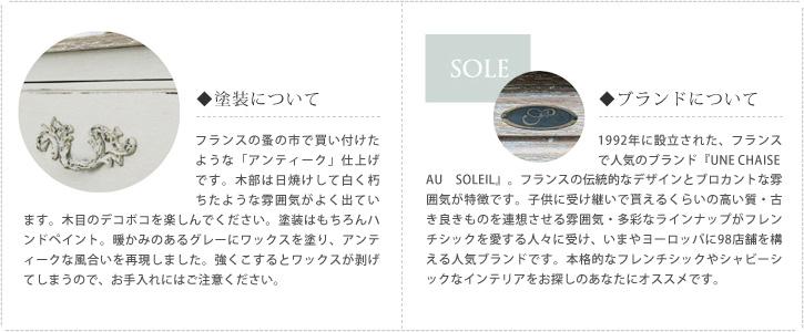 SOLEの塗装やブランド説明