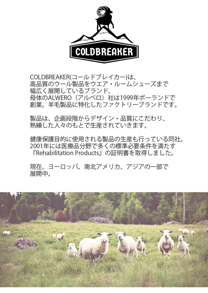 コールドブレーカー